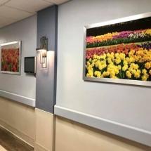 PRNC - Hallway 1